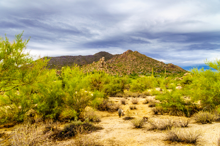 Desert landscape at Carefree Arizona with Black Mountain in the background