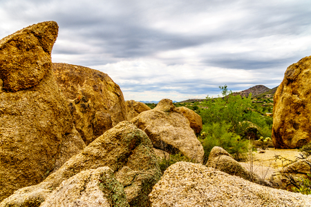 Cacti, Shrubs and large Rocks and Boulders in the desert near Carefree Arizona