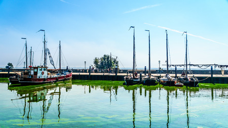 overtaken: Sail boats and motor boats moored in a part of the harbor overtaken by algae in the historic fishing village of Urk in the Netherlands
