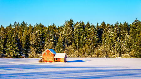 Red dilapidated and abandoned house in a wide snow covered field in Glen Valley in the Fraser Valley of British Columbia, Canada under clear blue sky Stock Photo