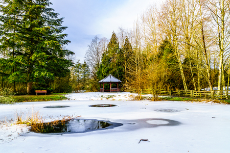 Partly Frozen Pond in Campbell Valley Park in the township on Langley in British Columbia, Canada on a nice winter day
