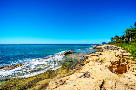 Waves crashing on the rocky shoreline and palm trees swaying in the wind under blue sky on the West Coast of the Hawaiian island of Oahu