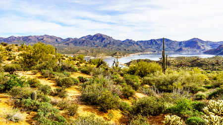Lake Bartlett and the surrounding semi desert of Tonto National Forest in Arizona, United States
