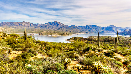 sates: Lake Bartlett and the surrounding semi desert of Tonto National Forest in Arizona, United States