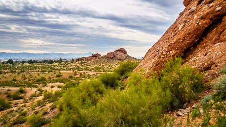 sates: Red Sandstone Buttes in Papago Park near the city of Phoenix in Arizona, United States of America