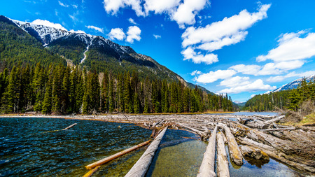 Log jam at the north end of Duffey Lake in the Coast Mountains. The lake is part of the Cayoosh Creek that runs along the Duffey Lake road between Pemberton and Lillooet in British Columbia