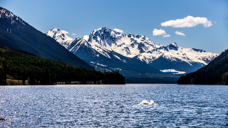 The snow capped peak of Mount Rohr at the south end of Duffey Lake. Duffey Lake is located along Highway 99 in the Coast Mountain Range, between Pemberton and Lillooet in southern British Columbia