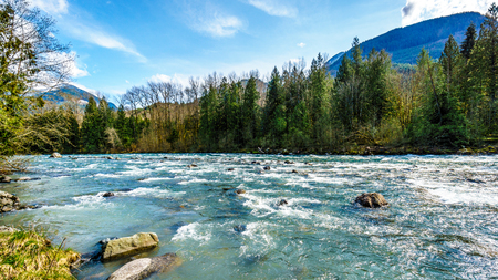 flowing water: The fast flowing crystal clear waters of the Chilliwack River