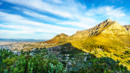 View of Cape Town, Table Mountain and Devils Peak from the hiking trail to the top of Lions Head mountain near Cape Town South Africa on a nice winter day