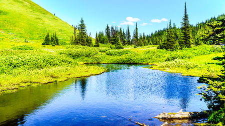 Small lake in the high alpine near the village of Sun Peaks in the Shuswap Highlands in central British Columbia Canada