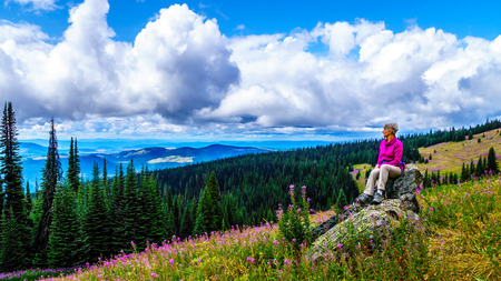 Senior woman sitting on a large rock in the high alpine surrounded by pink Fireweed flowers, during a hike to Mount Tod at Sun Peaks village in the Shuswap Highlands of central British Columbia Stock Photo