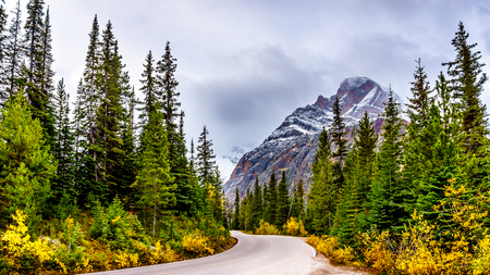 Mount Edith Cavell under cloudy skies in Jasper National Park in the Canadian Rockies near the town of Jasper