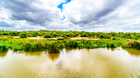 Landscape along the Olifants River in Kruger Park near Phalaborwa on the Limpopo Mpumalanga provincial border in South Africa