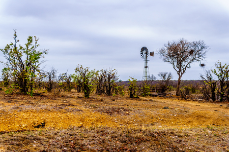 Windmill at a watering hole in the drought stricken northern part of Kruger National Park in South Africa