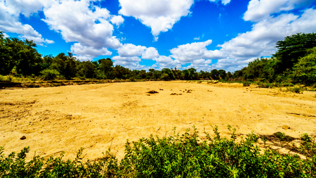 Completely dry river at the end of the dry season in Kruger National Park in South Africa