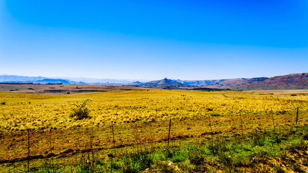 Landscape with the fertile farmlands along highway R26, in the Free State province of South Africa, with the mountain ranges of Lesotho in the background