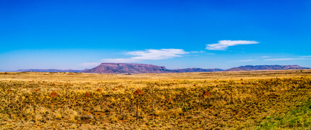 Panorama of the Endless wide open landscape of the semi desert Karoo Region in Free State and Eastern Cape provinces in South Africa under blue sky Archivio Fotografico