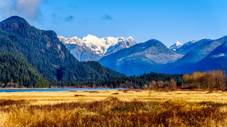 The snow covered Coast Mountains surrounding Pitt-Addington Marsh in the Fraser Valley near Maple Ridge, British Columbia, Canada on a clear winter day Stock Photo