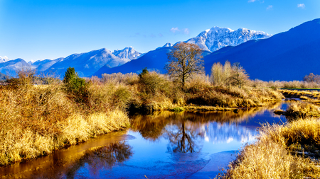 Reflections of snow covered Coast Mountains in the waters of Pitt-Addington Marsh in the Fraser Valley near Maple Ridge, British Columbia, Canada on a clear winter day