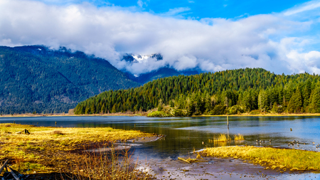 Entrance to Pitt Lake with the Snow Capped Peaks of the Coast Mountain Peaks of the surrounding Coast Mountain Range in the Fraser Valley of British Columbia, Canada