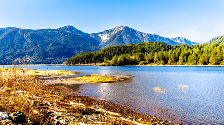 Entrance to Pitt Lake with the Snow Capped Peaks of the Golden Ears, Tingle Peak and other Mountain Peaks of the Coast Mountain Range in the Fraser Valley of British Columbia, Canada