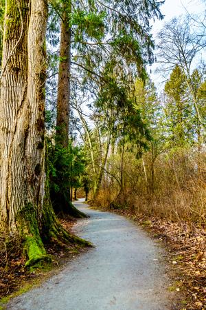 Walking the Trans Canada Trail near the Bonson Community in Pitt Meadows, British Columbia, Canada