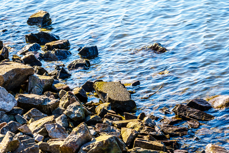 Rocks on the shoreline of the Matsqui Dyke along the Fraser River between the towns of Abbotsford and Mission in British Columbia, Canada