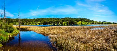 Panorama view of Kidd Lake along Highway 5A, the Kamloops-Princeton Highway, between the towns of Merritt and Princeton in British Columbia, Canada