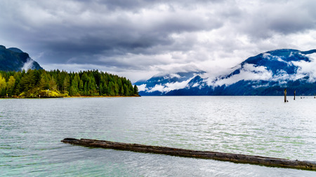 Logs floating in Pitt Lake under a dark cloudy sky with rain clouds hanging around the Mountains of the Coast Mountain Range in the Fraser Valley of British Columbia, Canada