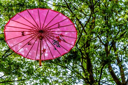 Pink Chinese Umbrella or Parasol under a tree canopy in the Yale Town suburb of Vancouver, British Columbia, Canada Stock fotó