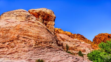 View of the rugged Red Sandstone Rocks on the Trail to the Guardian Angel Peak in Red Rock Canyon National Conservation Area near Las Vegas, Nevada, USA