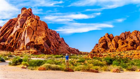 Red Aztec Sandstone Mountains under Blue Sky at the Mouse's Tank Trail in the Valley of Fire State Park in Nevada, USA