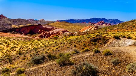 View of the  Valley of Fire State Park in Nevada, USA from the Petrified Logs Trail Stock Photo