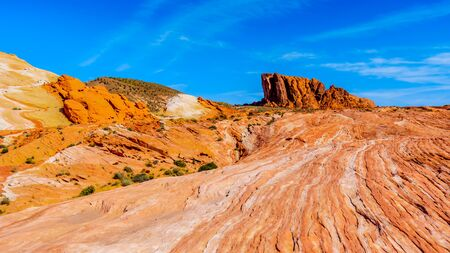 Large Red Sandstone formation amidst the colorful red, yellow and white banded rock formations at the Fire Wave Trail in the Valley of Fire State Park in Nevada, USA