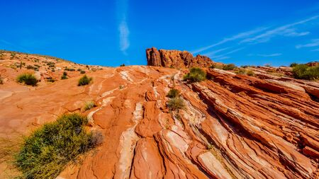 The colorful red, yellow and white banded rock formations along the Fire Wave Trail in the Valley of Fire State Park in Nevada, USA Stock Photo