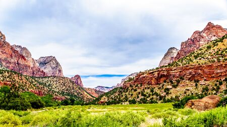 Mountains at both sides of the Parus Trail which follows along and over the meandering Virgin River in Zion National Park in Utah, USA