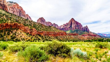 The Watchman and Cliffs of Bridge Mountain viewed from the Parus Trail as it follows along and over the meandering Virgin River in Zion National Park in Utah, USA