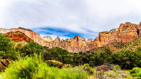 The Pink and Cream Peaks of the Sundial Mountain viewed from the Parus Trail as it follows along and over the meandering Virgin River in Zion National Park in Utah, USA
