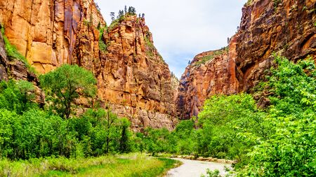 The North Fork of the Virgin River as it flows through Mystery Canyon and the The Narrows as it carved its way through the Sandstone Mountains of Zion National Park, Utah, United Sates