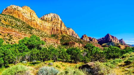 The Watchman and Bridge Mountain viewed from the Pa'rus Trail as it follows along and over the meandering Virgin River in Zion National Park in Utah, USA