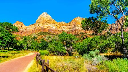 The Massive Red, Pink and Cream colored sandstone of Bridge Mountain viewed from the Pa'rus Trail as it follows the meandering Virgin River in Zion National Park, Utah, United Sates Banque d'images