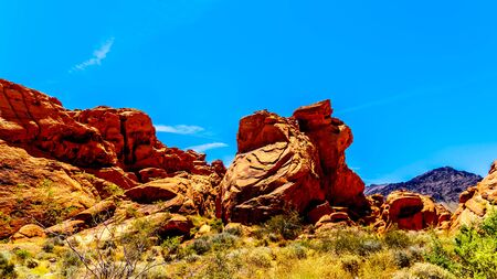 The erratic red Aztec Sandstone formation near the Arch Rock Campground under clear blue sky in the Valley of Fire State Park in Nevada, USA Archivio Fotografico