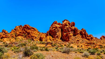 The erratic red Aztec Sandstone formation near the Arch Rock Campground under clear blue sky in the Valley of Fire State Park in Nevada, USA
