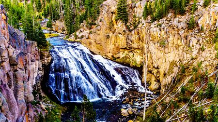 Gibbon Falls in the Gibbon River in Yellowstone National Park in Wyoming, United States of America