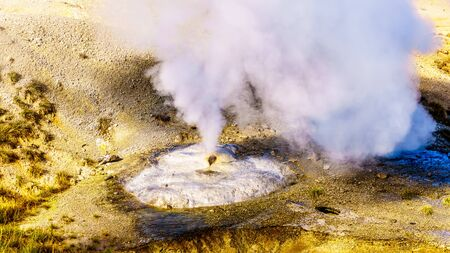 Close up of a Ledge Geyser vent hole in the Porcelain Basin of Norris Geyser Basin area in Yellowstone National Park in Wyoming, United States of America