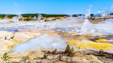 Geysers under blue sky in the Porcelain Basin of Norris Geyser Basin area in Yellowstone National Park in Wyoming, United States of America