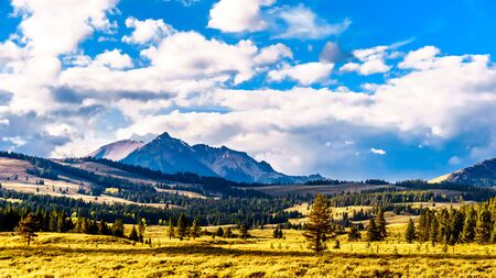 The Gallatin Mountain Range with Electric Peak under later afternoon sun. Viewed from the Grand Loop Road near Mammoth Hot Springs in Yellowstone National Park, Wyoming, United States 版權商用圖片