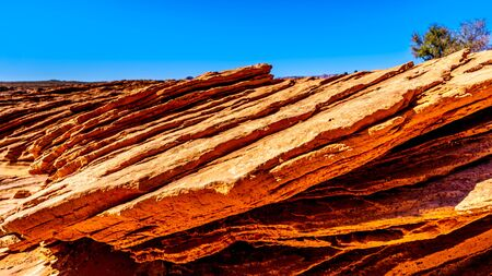 Close Up of the Layered Red Sandstone at the Horseshoe Bend viewpoint near Page, Arizona, United States