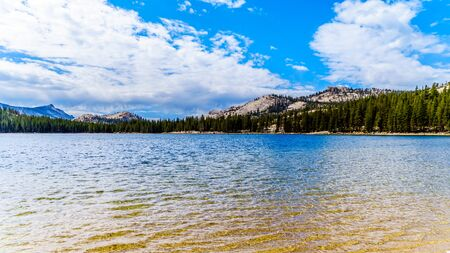 The clear glacial water of Tioga Lake at an elevation of 2938 m on Tioga Pass in the eastern part of Yosemite National Park, California, United States