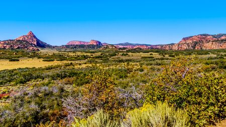 View of the Kolob Plateau and Pine Valley in the Zion National Park, Utah, United States. Viewed from the Kolob Terrace Road with Pine Valley Peak on the left in the background 版權商用圖片